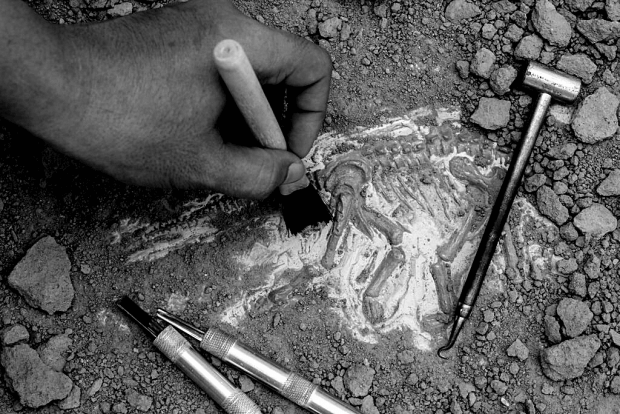 archeologisch onderzoek