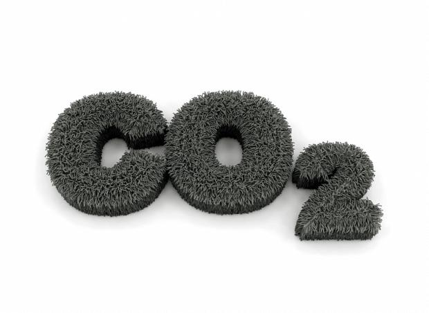 CO2 in gras
