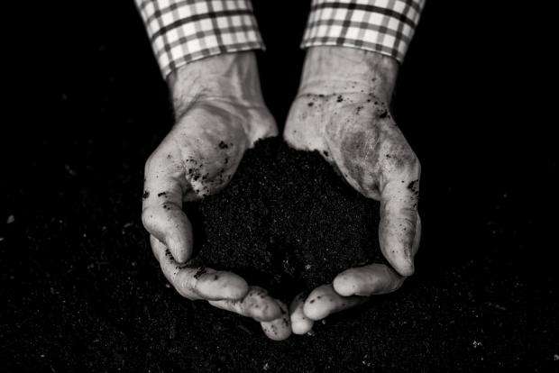 compost in de handen